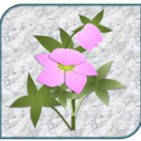 イラストの花