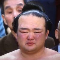 大相撲春場所~横綱「稀勢の里」優勝!!