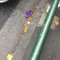 日乗 diary - 落としモノ 手袋67 lost glove67