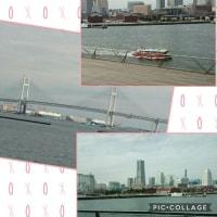 横浜大さん橋マルシェと掃除機