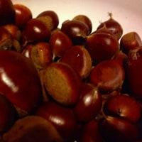 #レシピ #栗ジャム #シソの実漬け #季節の保存食