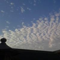 本日今宮戎神社上空地震雲。