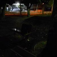 夜間公園練習