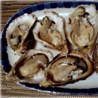 ウニとオイスター♪ Diana's Seafood