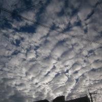 たくさん過ぎる雲クンたち・・・