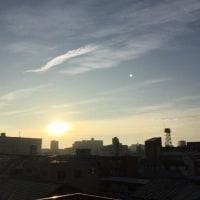 朝の陽射しが嬉しいですね(^o^)(^o^)