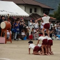平野幼稚園の運動会