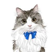 長毛猫ちゃん 塗り絵感覚のパターンで♡