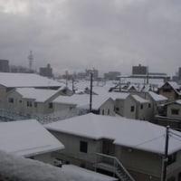 雪じゃ、雪!!