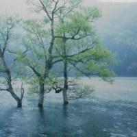 初夏の北竜湖