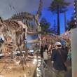 福井の恐竜博物館に行って参りました!