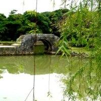 「沖縄楽園生活」さよなら編 (1)始まりは「ゆいレール駅周辺物語」