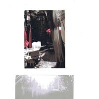 ゼロ磁場 西日本一 氣パワー・開運引き寄せスポット 東日本大震災行方不明者のメッセージ届く(3月13日)