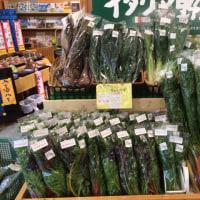 奇跡の野菜とも言われるビーツ、あります