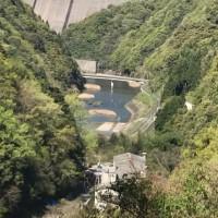稚鮎の河川放流