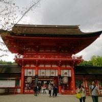 あ・・・そうだ 京都は いまだ -3-  ~下鴨神社~