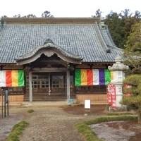 雲照寺の蠟梅