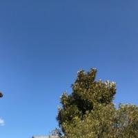 寒かった今日の空は