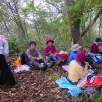 15 盛太ヶ岳(891m:島根県吉賀町)登山  昼食タイムに