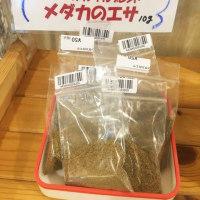 売店にて「世羅のメダカ」販売中~♪