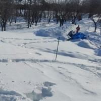 氷祭り 2日目