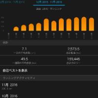 何とか月間300km、手段が目的と化した。