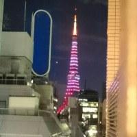【番外】バレンタインの東京タワー