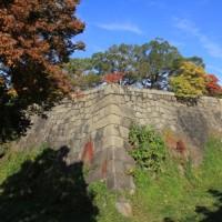 大阪城と紅葉