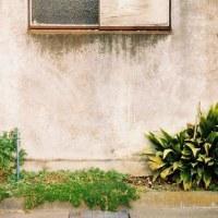 窓と壁/壁と窓