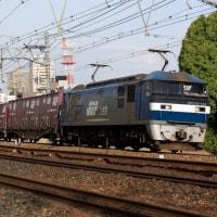 最後は夙川カーブに戻って(4月25日撮影)