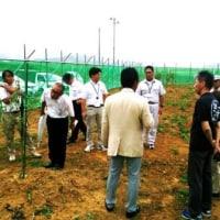 地域の宝研究開発事業オリーブ栽培現地検討会