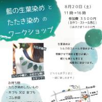 藍染めワークショップ 2016年8月20日(土)【森のテラス主催】