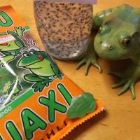 カエルは好きだけど・・・(^^;