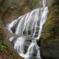 「80歳にして想う日本民族とは(5)自然の風景や花々を愛する民族」