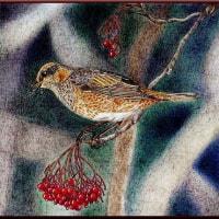 色鉛筆画325 (冬鳥)