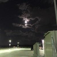 満月が綺麗だなぁ