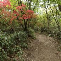 ダイヤモンドトレイル(大阪) その4 人気の山