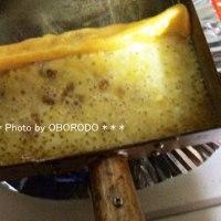 卵焼き器でチーズを焼くと美味しいらしいと聞いたので