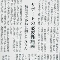本日、釧路新聞にしおんの会代表の記事が掲載される☆