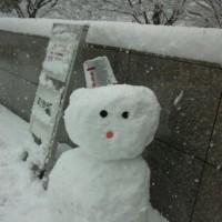 雪だるま❄