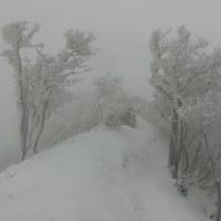 高見山(300名山)☆一瞬の晴れ間で見た霧氷