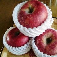 文旦のマーマレードとリンゴジャム