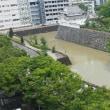 昨日の雨で