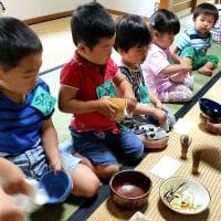 幼児のお抹茶教室