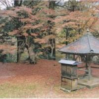 紅葉を見てきました 鰐淵寺