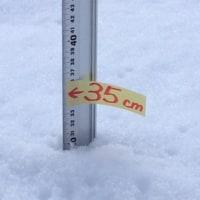積雪が30センチを超えました