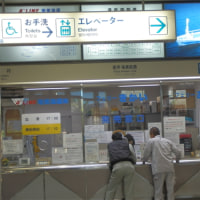 「サワラチャンの加計呂麻島日記-2016-12-10号」