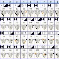 ボウリングのリーグ戦 (301)
