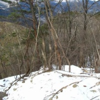 今度は中曽根尾根で雪歩き    日光/鳴虫山