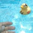 ウルトラセブン第3話『湖のひみつ』・・・と言いながら『ウルトラあひる』で遊ぶ。